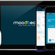 Moodbeam: Communicating Feelings